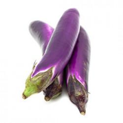 Brinjal Purple Long Seeds
