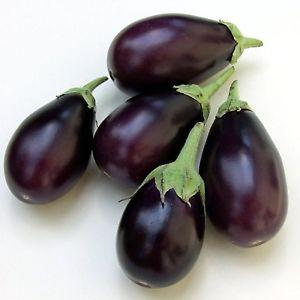 Brinjal Purple Seeds (Round)