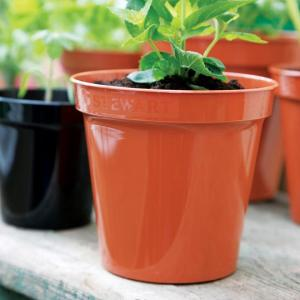 Plastic Flower Pot Orange