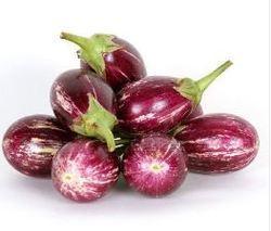 Brinjal Seeds CVK
