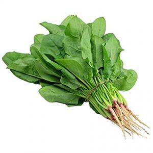 Malabar spinach (Bachali)